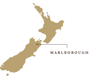 Marlborough New Zealand